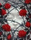 roses-et-c3a9pinesl